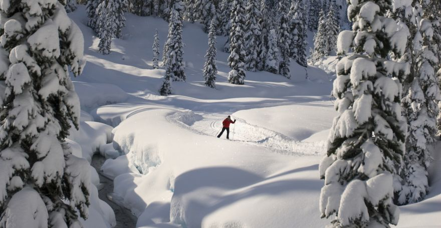 Whistler Cross Country Skiing